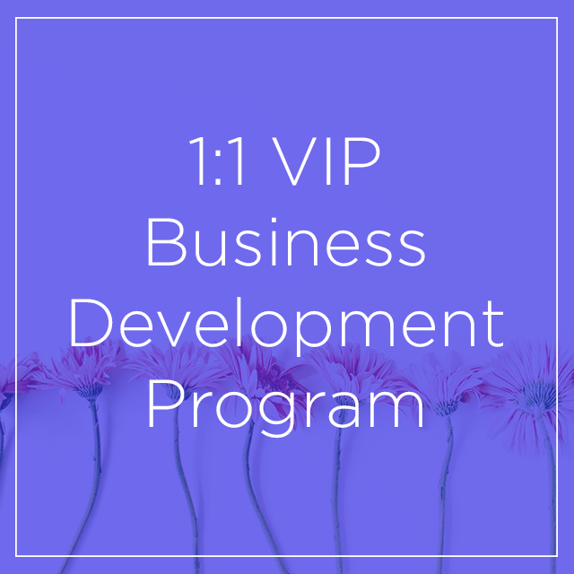 1:1 VIP Business Development