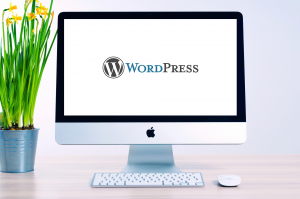 How to Build WordPress Websites for Clients